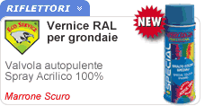 Vernice Ral special Eco Service