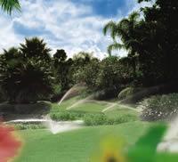 Giardino irrigato professionalmente